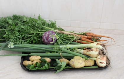 Príprava zeleninovej polievky